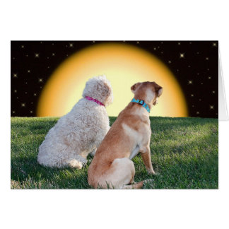 Puppy Love Greeting -Lab and Golden Doodle Romance Card