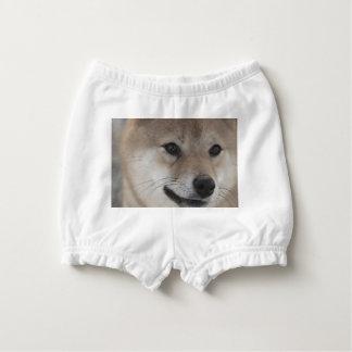 puppy nappy cover
