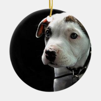 Puppy Pit Bull T-Bone Round Ceramic Decoration