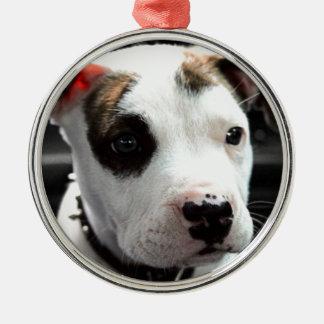 Puppy Pit Bull T-Bone Silver-Colored Round Decoration