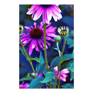 PUR-polarize Coneflowers Stationery