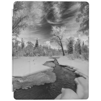 Pure Campbell Creek iPad Cover
