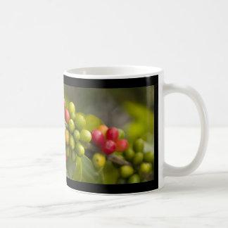 PURE KONA COFFEE COFFEE MUG