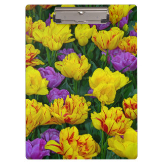 Purple and yellow spring tulips print clipboard