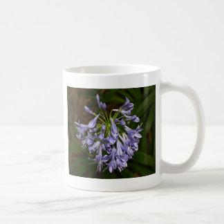 Purple blue agapanthus flower in bloom in garden coffee mug