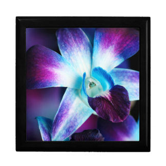 Purple & Blue Dendrobium Orchid Customised Orchids Gift Box