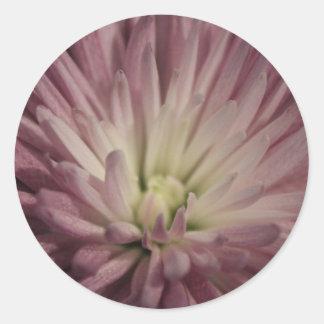 Purple Floral Burst Round Sticker