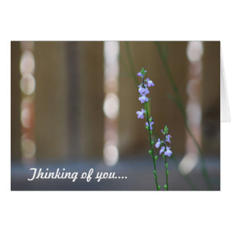 Purple Flower Card, white envelopes included Greeting Card