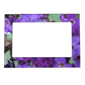 Purple Flower Magnetic Frame