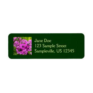 Purple Flowers from San Francisco