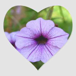 Purple Garden Petunia Heart Sticker