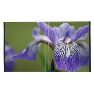 Purple Siberian Iris iPad Folio Case