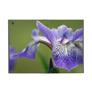 Purple Siberian Iris Covers For iPad Mini