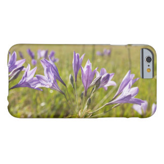 Purple Wildflowers in a Field Barely There iPhone 6 Case
