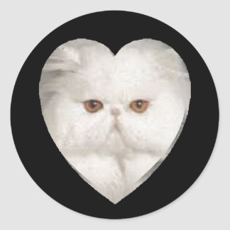 Purrfect Kitty Classic Round Sticker