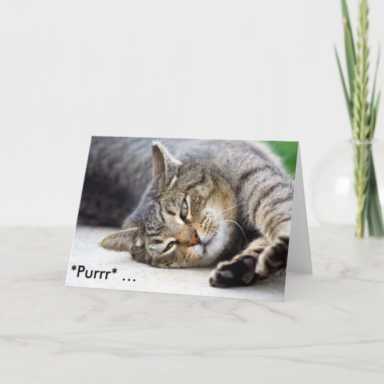 Purrr Funny Birthday Card With Cat Zazzle