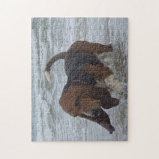 Puzzle Basset Hound In The Sea