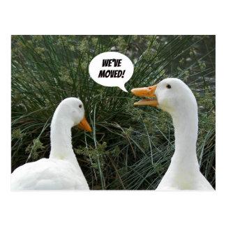 Quacking Duck Photo Change of Address Postcard