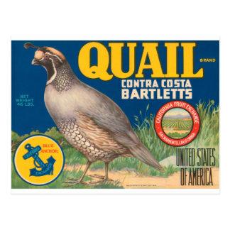 Quail Brand Contra Costa Bartletts Postcard