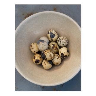 Quails eggs in a bowl postcard