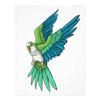 Quaker Parrot Products Flyer