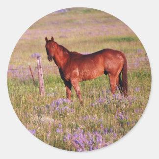 quarter horse classic round sticker