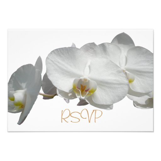 Quinceanera RSVP Guest Reply White Orchids Custom Invitation