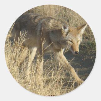 R0014 Coyote sticker