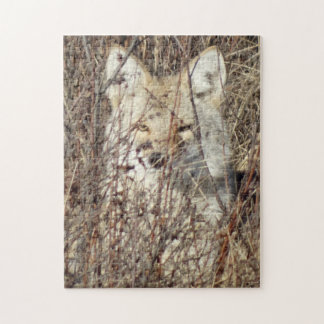 "R0021 Coyote ""Watching You"" Jigsaw Puzzle"