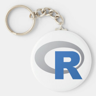 R Statistical Software Products Key Ring