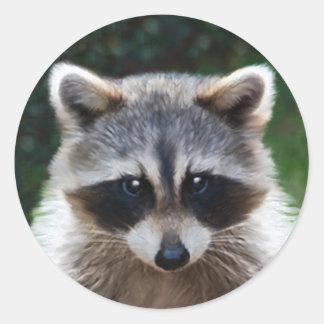 Raccoon Coon Wild Animals Wildlife Stickers