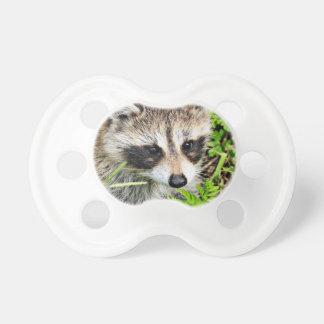raccoon dummy