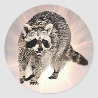 Racoon plain sticker
