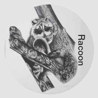 Racoon Products Classic Round Sticker