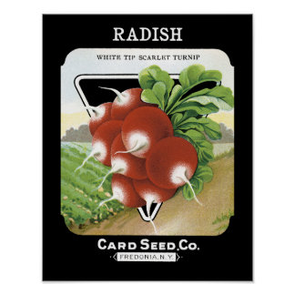 Radish Seed Packet Label Poster