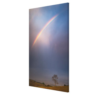 Rainbow And Tree Landscape Canvas Print