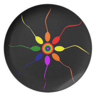 Rainbow Pinwheel Plate