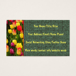Rainbow Tapestry Business Card