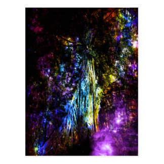 Rainbow Tree Postcard