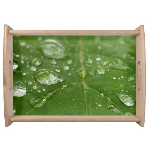 Rained Leaf Service Trays