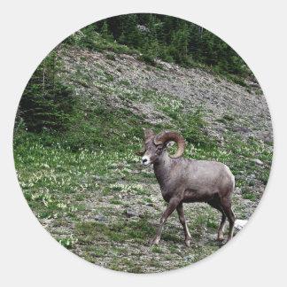 Ram on the Mountain Classic Round Sticker