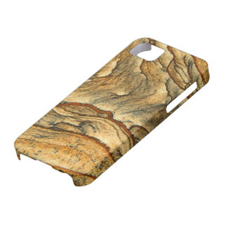Rare landscape jasper closeup iPhone 5 covers