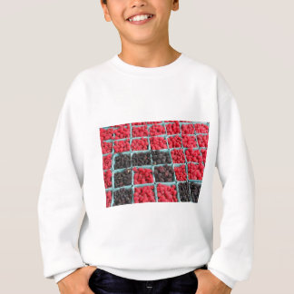 Raspberry and Blackberry Pints Sweatshirt