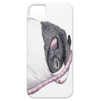 rat sleeping iPhone 5 case