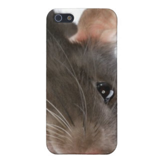 Rats!!! iPhone 5/5S Covers
