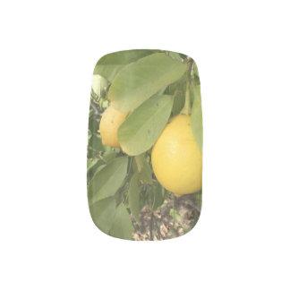 Real lemon drops minx nail art