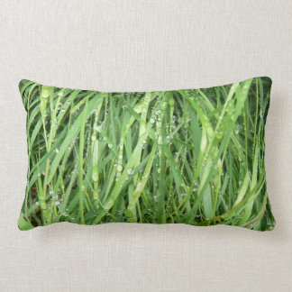 Real wet grass close up cushion