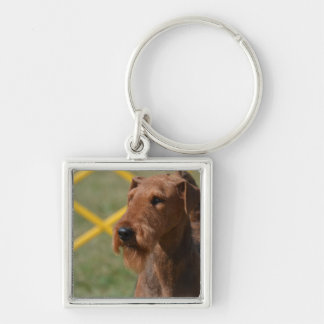 Really Cute Airedale Terrier Silver-Colored Square Key Ring