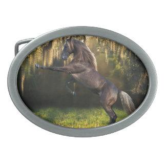 Rearing Stallion Oval Belt Buckles