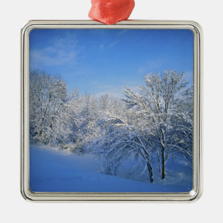 Record snow in Louisville, Kentucky. Christmas Ornament